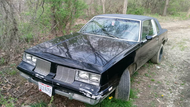 Picture of 1985 Oldsmobile Cutlass Supreme