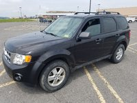 Picture of 2011 Ford Escape XLT 4WD, exterior