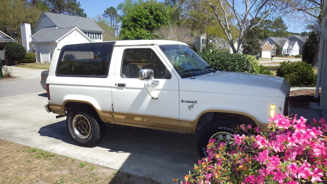 Picture of 1984 Ford Bronco STD 4WD, exterior, gallery_worthy