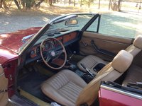 Picture of 1975 FIAT 124 Spider, interior, gallery_worthy