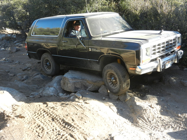 Picture of 1985 Dodge Ramcharger