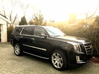 Picture of 2017 Cadillac Escalade Luxury 4WD, exterior, gallery_worthy