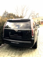 Picture of 2017 Cadillac Escalade Luxury 4WD, exterior