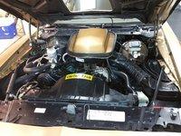 Picture of 1981 Pontiac Firebird Trans Am, engine