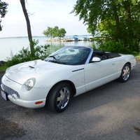 Picture of 2003 Ford Thunderbird Premium Convertible