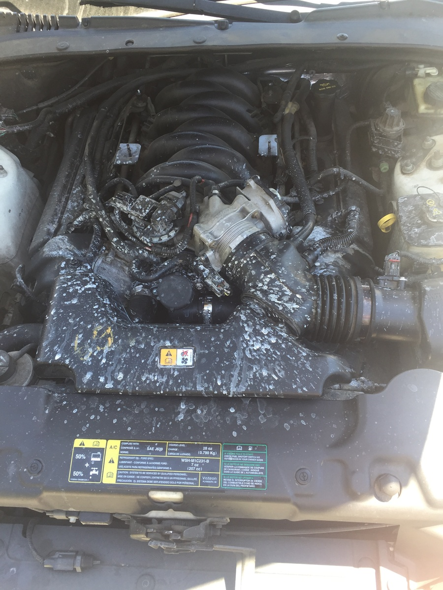 Lincoln LS Questions - 03 Lincoln ls v8, leak in the notch