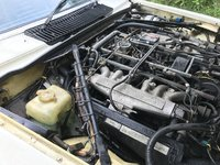 Picture of 1987 Jaguar XJ-S, engine, gallery_worthy