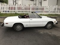 1978 Alfa Romeo Spider Picture Gallery