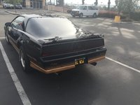 Picture of 1984 Pontiac Firebird Trans Am, exterior, gallery_worthy