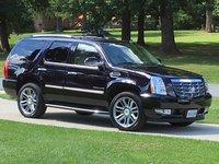Picture of 2014 Cadillac Escalade Luxury, exterior