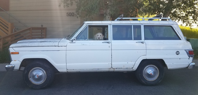 Picture of 1979 Jeep Wagoneer