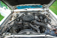 Picture of 1988 Dodge Diplomat SE, engine, gallery_worthy