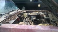 Picture of 1977 International Harvester Scout, engine, gallery_worthy