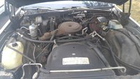 Picture of 1984 Chevrolet Caprice Classic, engine