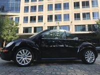 Picture of 2010 Volkswagen Beetle 2.5L Convertible, exterior