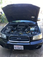 Picture of 2004 Subaru Forester XS, engine
