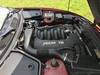 Picture of 1997 Jaguar XK-Series XK8 Convertible, engine, gallery_worthy