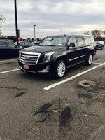 Picture of 2016 Cadillac Escalade ESV Platinum 4WD, exterior
