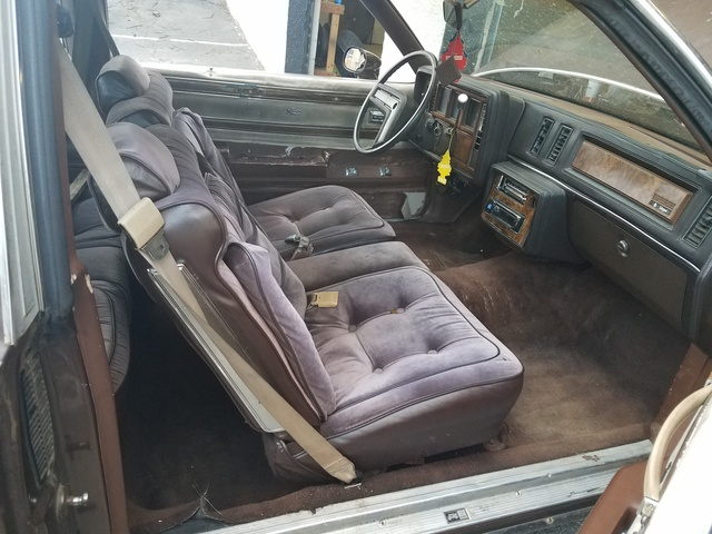 1981 Buick Regal Interior Pictures Cargurus