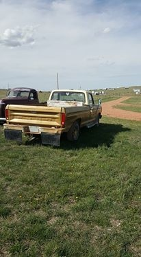 Picture of 1979 Ford F-100