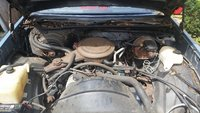 Picture of 1981 Chevrolet Malibu Wagon RWD, engine, gallery_worthy