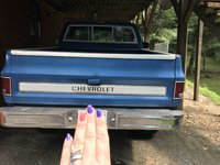 Picture of 1976 Chevrolet C/K 10 Custom Deluxe, exterior, gallery_worthy