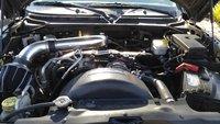 Picture of 2010 Dodge Dakota Bighorn/Lonestar Ext. Cab, engine, gallery_worthy