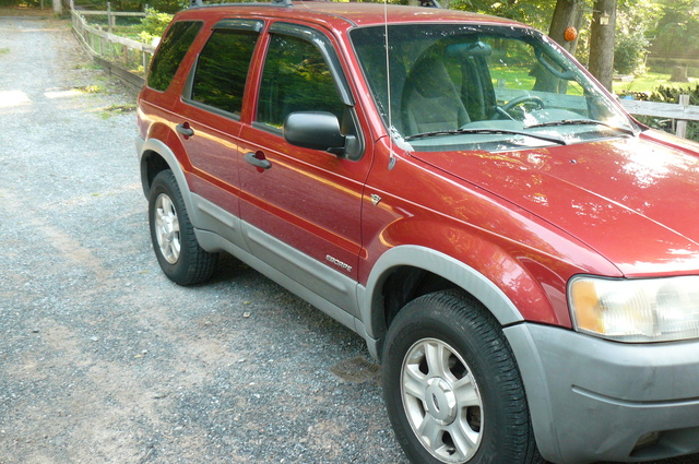 Picture of 2001 Ford Escape XLT 4WD