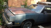 1980 Oldsmobile Cutlass Supreme Overview
