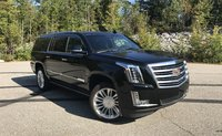 Picture of 2017 Cadillac Escalade ESV Platinum 4WD, exterior, gallery_worthy