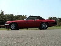 1991 Jaguar XJ-S Picture Gallery