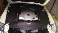 Picture of 2006 Cadillac STS V8 RWD, engine, gallery_worthy