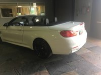 Picture of 2017 BMW M4 Convertible RWD, exterior, gallery_worthy