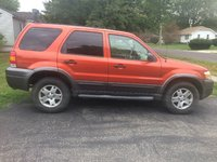 Picture of 2006 Ford Escape XLT Sport 4WD, exterior, gallery_worthy