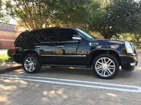 Picture of 2007 Cadillac Escalade 4WD, gallery_worthy