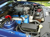 Picture of 2012 Ford Shelby GT500 Coupe, engine, gallery_worthy