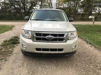 Picture of 2009 Ford Escape XLT, exterior, gallery_worthy