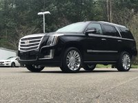 Picture of 2015 Cadillac Escalade Platinum Edition 4WD, exterior, gallery_worthy