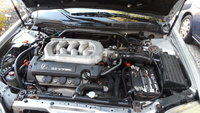 Picture of 1999 Acura TL 3.2 FWD, engine, gallery_worthy