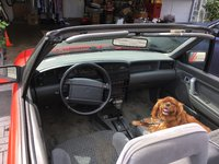 Picture of 1993 Mercury Capri 2 Dr STD Convertible, interior, gallery_worthy