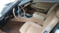 Picture of 1984 Jaguar XJ-Series XJS Coupe RWD, interior, gallery_worthy