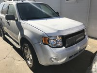 Picture of 2011 Ford Escape Hybrid Base, exterior, gallery_worthy