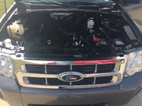 Picture of 2010 Ford Escape XLT 4WD, engine, gallery_worthy
