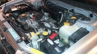 Picture of 2000 Subaru Forester L, engine, gallery_worthy