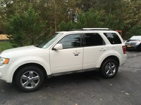 Picture of 2010 Ford Escape Limited, gallery_worthy