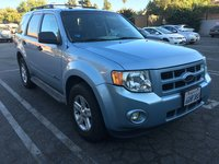 Picture of 2009 Ford Escape Hybrid Base, gallery_worthy