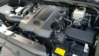 Picture of 2014 Toyota 4Runner Limited, gallery_worthy