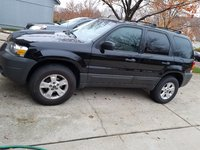Picture of 2007 Ford Escape XLT, gallery_worthy