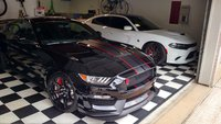 Picture of 2017 Ford Shelby GT350 R, gallery_worthy