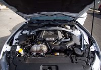 Picture of 2015 Ford Mustang GT 50 Years Limited Edition, engine, gallery_worthy